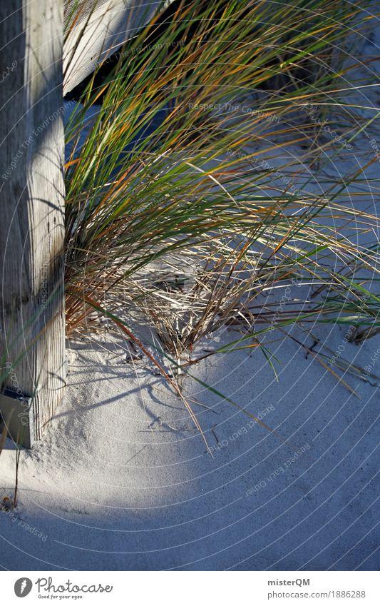 Strandleben II Natur ästhetisch Ostsee Ostseeinsel Gras Grasland Sand Urlaubsfoto Urlaubsstimmung Wegrand Dünengras Farbfoto Gedeckte Farben Außenaufnahme