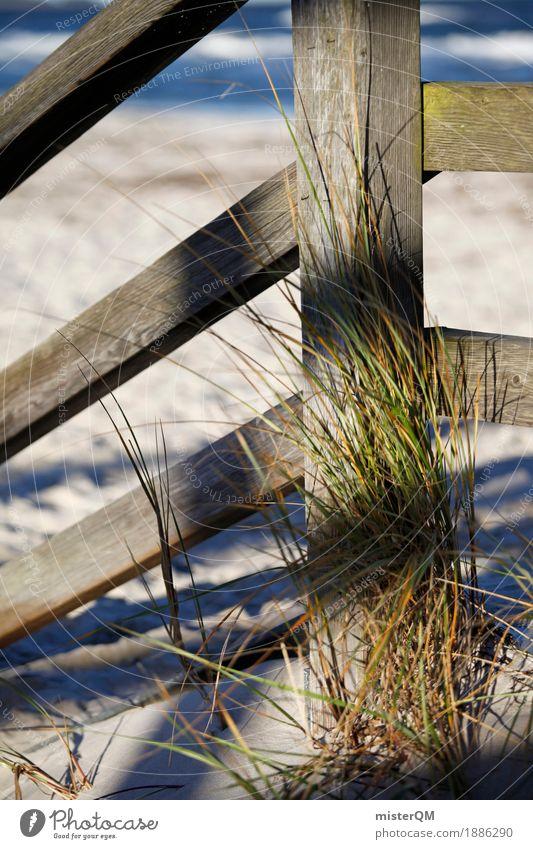 Strandleben I Natur ästhetisch Ostsee Ostseeinsel Stranddüne Sand Küste Meer Farbfoto Gedeckte Farben Außenaufnahme Detailaufnahme Experiment abstrakt