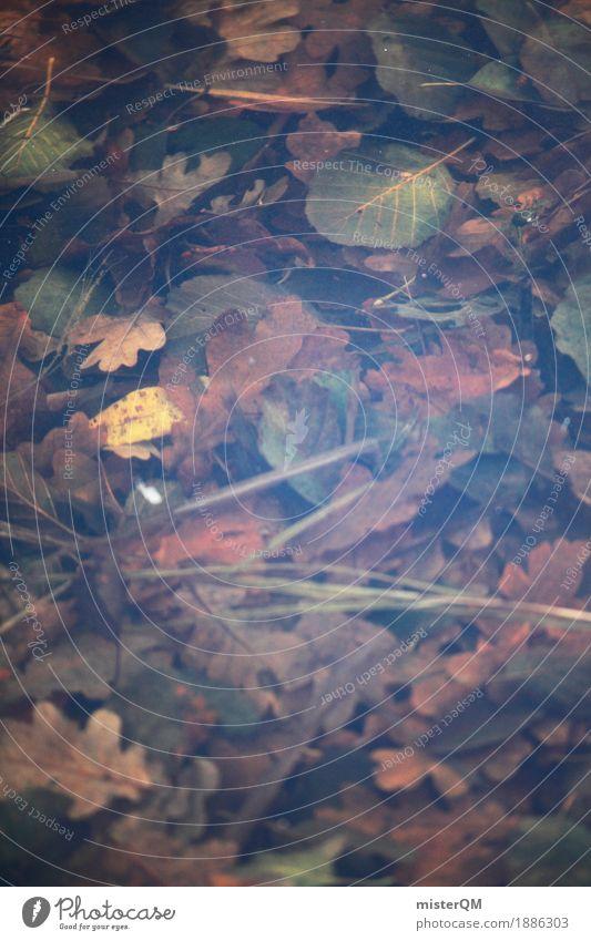 Herbstpfütze. Blatt Kunst braun ästhetisch herbstlich Pfütze verrotten