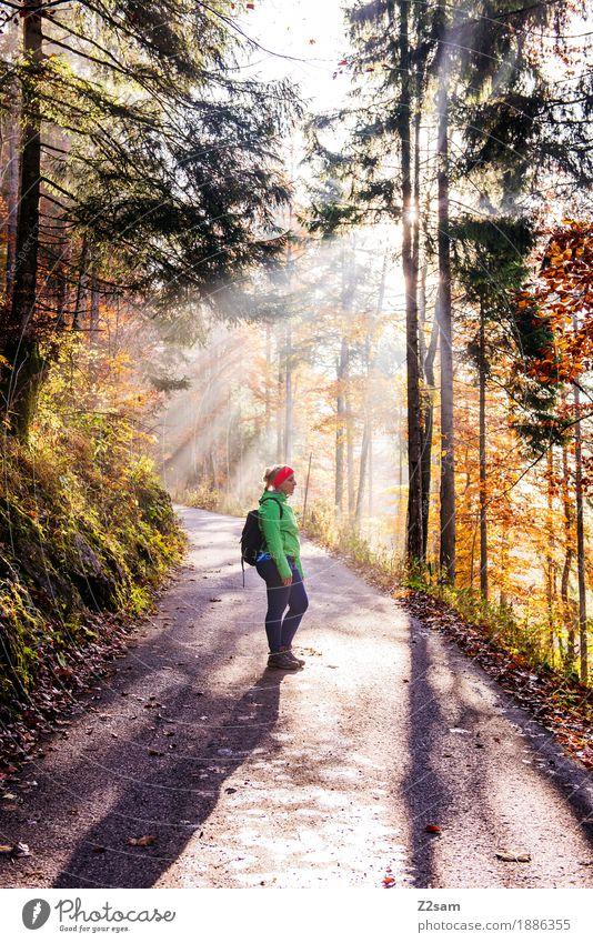 Erleuchtung Natur Jugendliche grün Junge Frau Sonne Baum ruhig Wald 18-30 Jahre Berge u. Gebirge Erwachsene Religion & Glaube Herbst natürlich Sport träumen