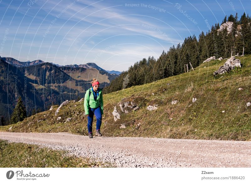 Immer weiter!!!! Abenteuer Berge u. Gebirge wandern Sport Junge Frau Jugendliche 18-30 Jahre Erwachsene Natur Landschaft Herbst Alpen Sonnenbrille Rucksack