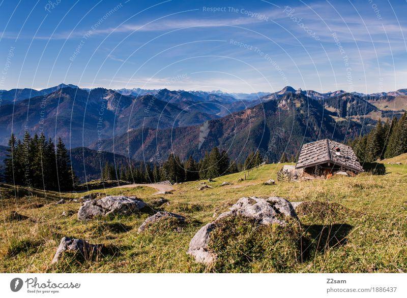 Heidi lässt grüßen Abenteuer Berge u. Gebirge wandern Umwelt Natur Landschaft Himmel Herbst Schönes Wetter Wiese Alpen Gipfel Hütte nachhaltig natürlich blau