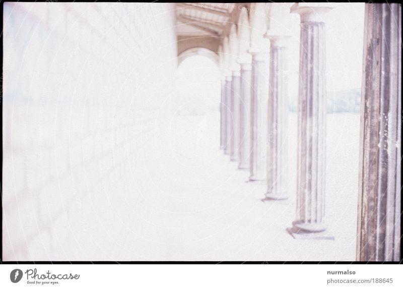 Entgeistert Kunst Umwelt Park Menschenleer Kirche Burg oder Schloss Bauwerk Mauer Wand Säule Gang Fußgänger Wege & Pfade Zeichen leuchten Blick alt ästhetisch