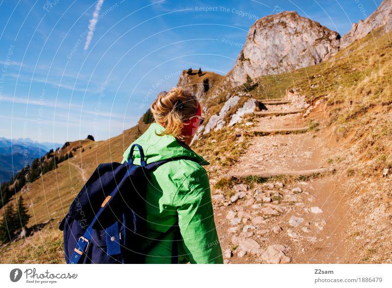 Hinauf! Hinauf! Natur Jugendliche grün Junge Frau Landschaft Erholung 18-30 Jahre Berge u. Gebirge Erwachsene Herbst Sport Gesundheit gehen Freizeit & Hobby