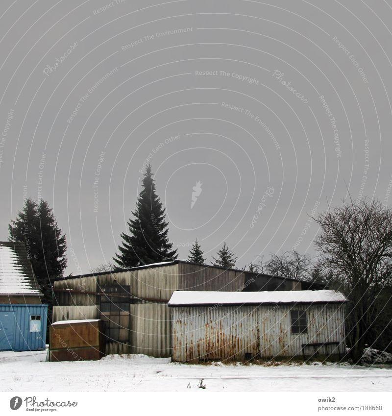 Wellblechwände Himmel Baum Winter Haus Schnee Wand Garten Mauer Gebäude Eis Architektur Wohnung Nebel Wetter Horizont