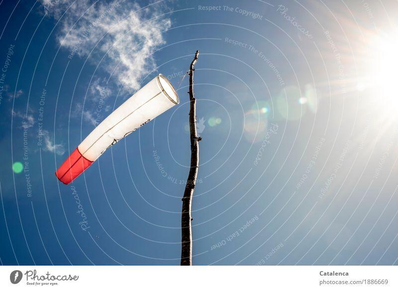 Orientierung | woher weht der Wind Startplatz Gleitschirmfliegen Himmel Sonne Sommer Schönes Wetter Ast Mast Holz Kunststoff Windsack schaukeln warten blau rot