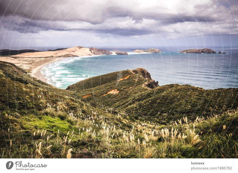 cape reinga Natur blau Sommer Wasser Meer Landschaft Wolken Strand gelb Sand Wellen Sträucher Bucht Unwetter Gewitterwolken Neuseeland