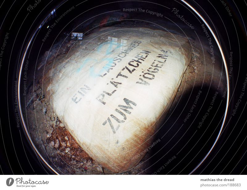 EIN LAUSCHIGES PLÄTZCHEN ZUM VÖGELN Blatt kalt dunkel Fenster Graffiti Sex dreckig Schilder & Markierungen außergewöhnlich Schriftzeichen rund Hinweisschild