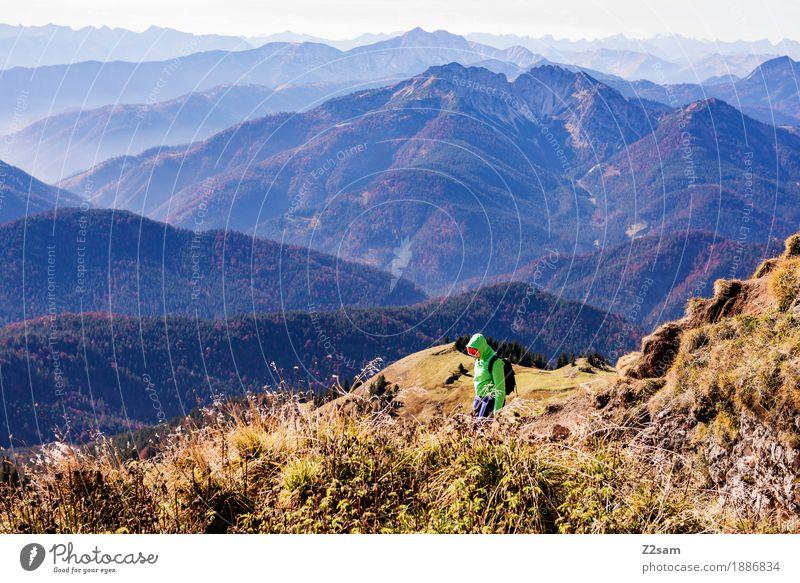 Entdeckerin Natur Jugendliche grün Junge Frau Landschaft Erholung ruhig 18-30 Jahre Berge u. Gebirge Erwachsene Herbst Wiese Lifestyle Sport Freiheit gehen