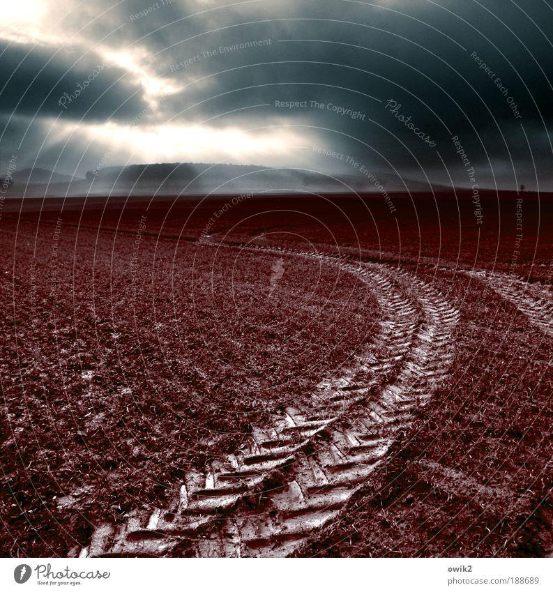 Runter vom Acker Himmel Natur Sonne Wolken Umwelt Landschaft Herbst Wege & Pfade Horizont Erde Wetter Feld Klima Urelemente Wandel & Veränderung Schönes Wetter