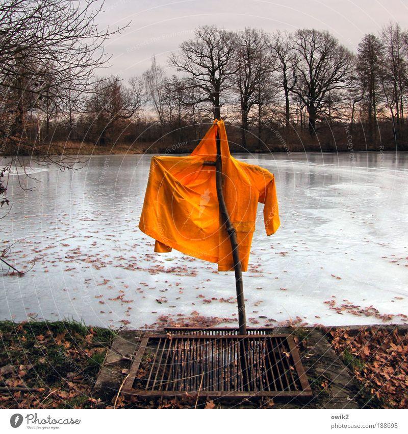 Vogelscheuche Himmel Natur Pflanze Wasser Baum Landschaft Blatt Wolken Winter Umwelt gelb Gras See Horizont Eis Erde