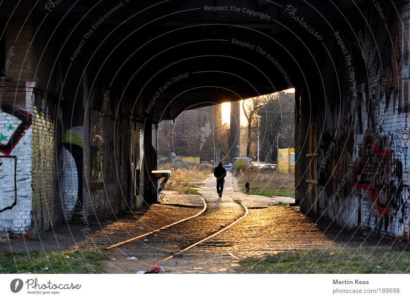 nach daisy die sonne, sebastian und dizzy Mensch alt Stadt Leben kalt Berlin Stil Kunst Linie Hund Wärme Graffiti dreckig Architektur Fassade