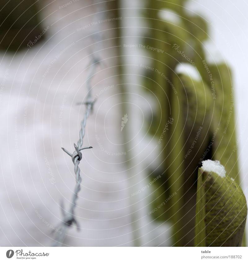 draußen bleiben. meins. Lifestyle Häusliches Leben Garten Winter Eis Frost Schnee Park Holz Metall Aggression dunkel stachelig Gefühle Vertrauen Angst