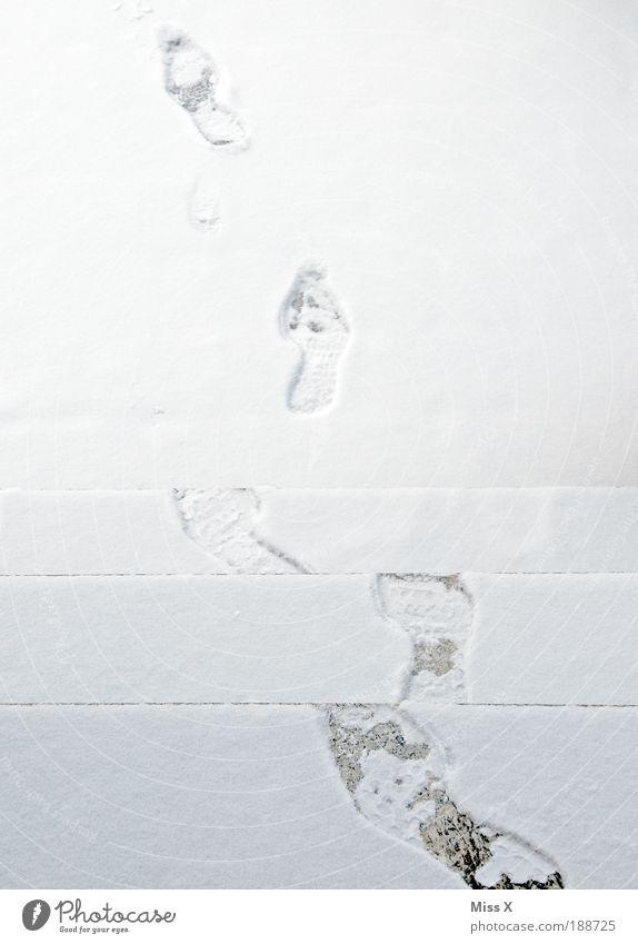 Schnee(ll) weg Winter Klima Wetter schlechtes Wetter Eis Frost Tür Verkehrswege Fußgänger Wege & Pfade gehen laufen frisch kalt weiß Glätte Rutschgefahr