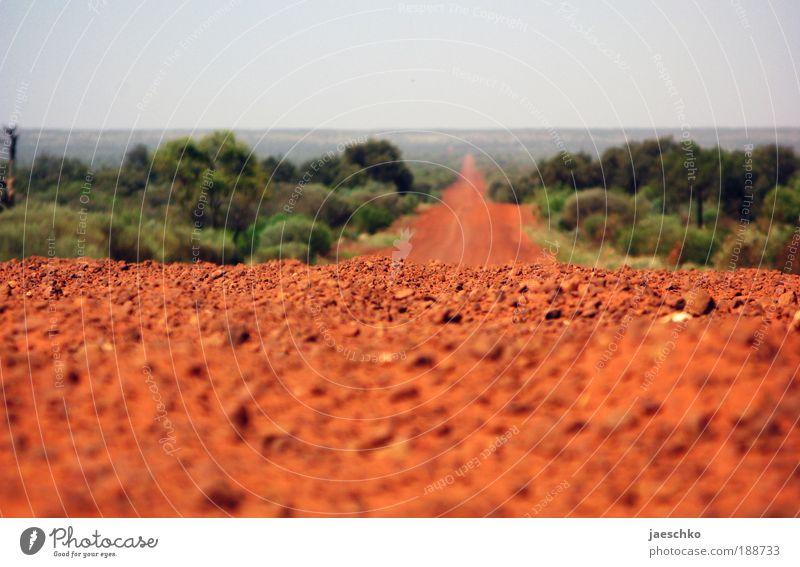 It's a bloody long way rot Ferien & Urlaub & Reisen Australien Straße Bewegung Sand Stein Wege & Pfade braun Horizont laufen frei natürlich Hoffnung Richtung