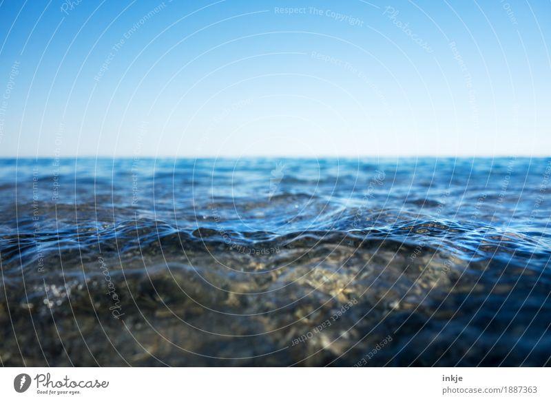 seicht Umwelt Natur Landschaft Urelemente Wasser Himmel Wolkenloser Himmel Horizont Schönes Wetter Wellen Küste Nordsee Ostsee Meer blau Wasseroberfläche