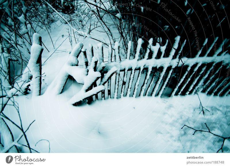 Daisy again Winter Schnee Garten Park kaputt verfallen Grenze Zaun Unwetter Holzbrett chaotisch brechen Dezember Lawine Schneewehe Winterdienst