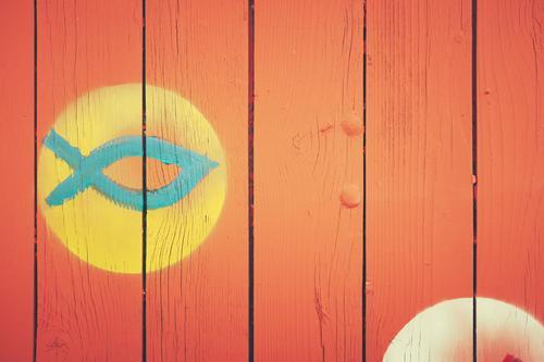 Der blaue Fisch rot Wand Religion & Glaube Graffiti lustig Hintergrundbild Holz klein Mauer Schwimmen & Baden Fassade Design Linie einfach Zeichen