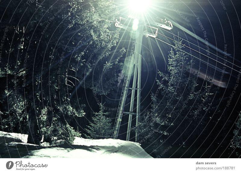 Shining Pylon Natur Baum ruhig Winter Berge u. Gebirge Bewegung Schnee leuchten fahren Stahl Lichtschein Wintersport Langzeitbelichtung Pflanze Nacht
