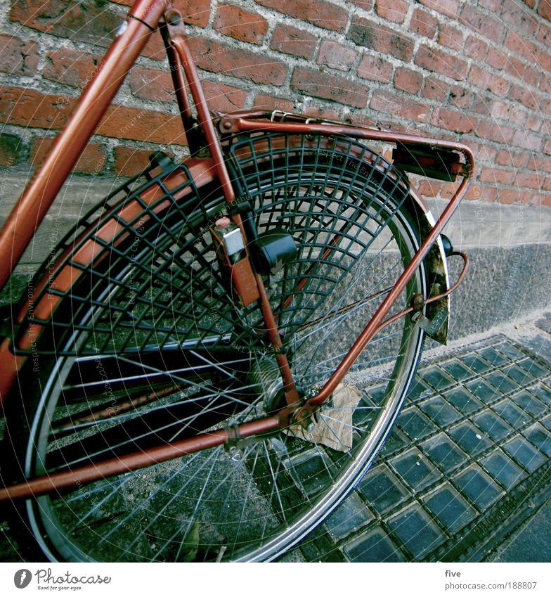 Red Dragon rot Freude Wand Mauer Fahrrad Boden fahren Rad Backstein Verkehrsmittel Dänemark Speichen Kopenhagen
