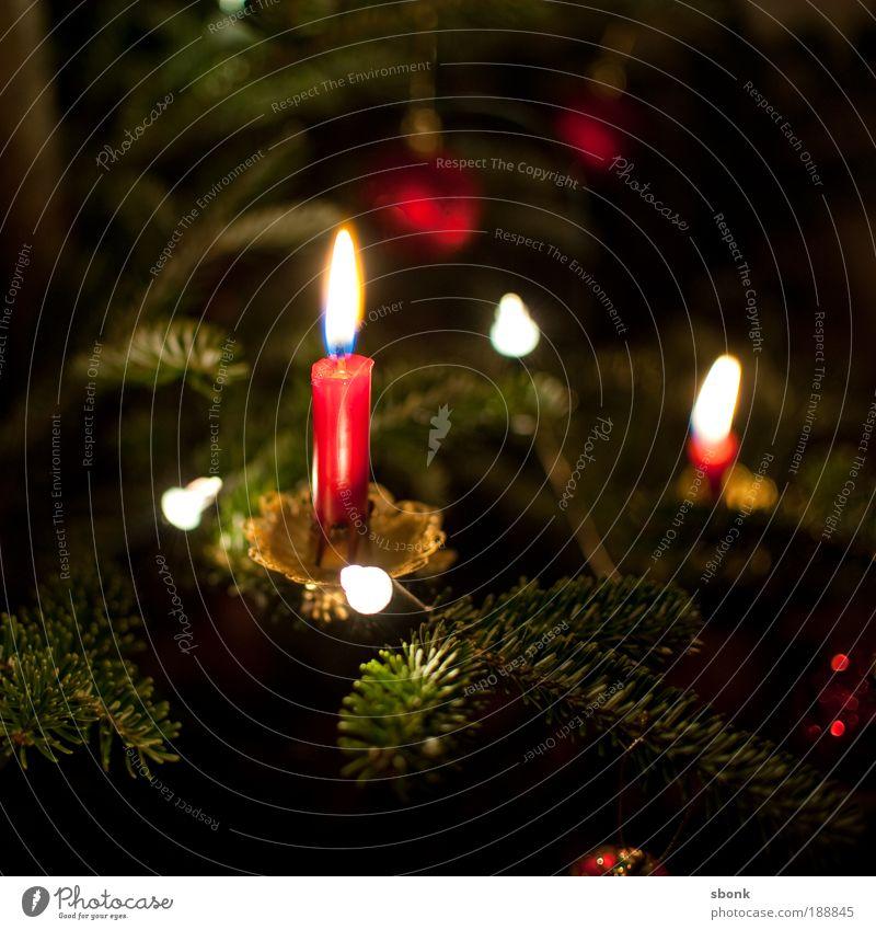 kerzenkitsch Weihnachten & Advent schön rot ruhig Lampe Gefühle Wärme Stimmung glänzend Wohnung Kerze Weihnachtsbaum Kitsch Dekoration & Verzierung Häusliches Leben