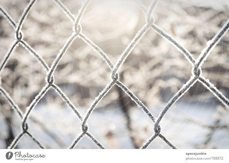 Light Natur Schnee Landschaft Eis Metall Frost frieren Zaun gefangen Kristalle Maschendrahtzaun