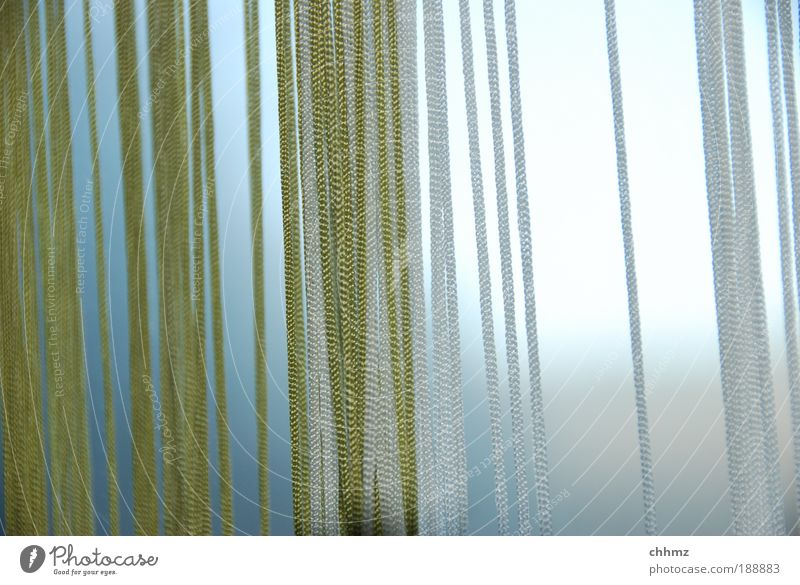 Kordeln grün Linie Seil dünn Vorhang hängen Gardine vertikal parallel Schutz Faser Sichtschutz