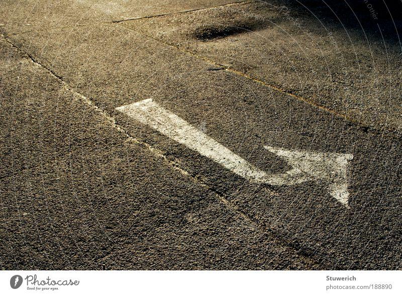 Folge dem Pfeil! Straße grau Wege & Pfade Schönes Wetter Hinweis richtungweisend