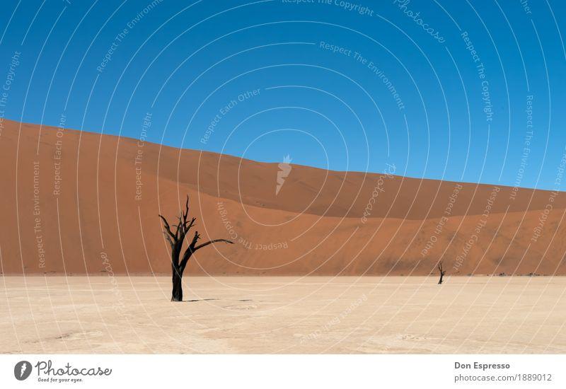 Hidden Vlei Ferien & Urlaub & Reisen Tourismus Abenteuer Ferne Freiheit Safari Expedition Umwelt Natur Landschaft Sand Wärme Dürre Wüste dehydrieren heiß trist