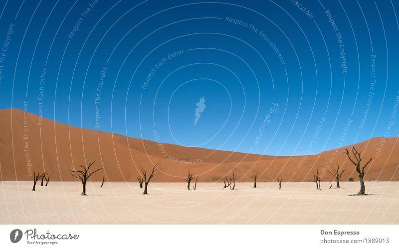 Deadvlei Ferien & Urlaub & Reisen Tourismus Abenteuer Ferne Freiheit Safari Expedition Umwelt Natur Landschaft Sand Wärme Dürre Wüste dehydrieren heiß trist