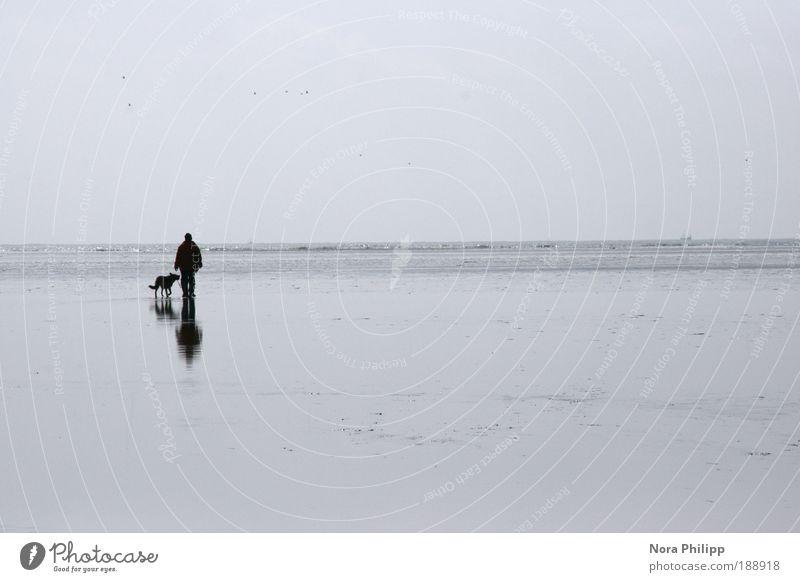 Der Hund und sein Herrchen Mensch Himmel Natur Wasser blau Ferien & Urlaub & Reisen Meer Strand ruhig Einsamkeit Ferne Umwelt Freiheit Sand träumen Freundschaft