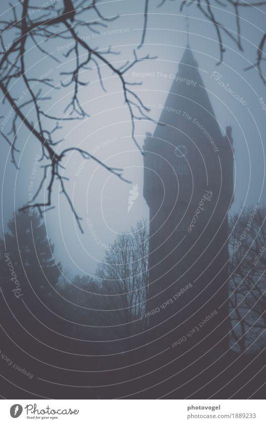 Im Nebel Baum Sträucher Turm Bauwerk Gebäude Wasserturm bedrohlich dunkel Farbfoto Gedeckte Farben Außenaufnahme Menschenleer Dämmerung Silhouette Unschärfe