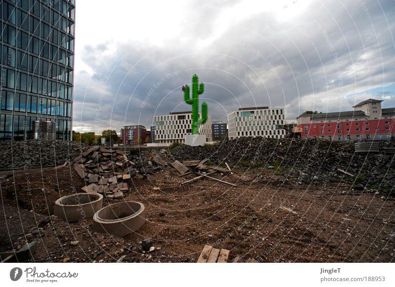 Kunst am Bau [Koeln 2.0] grün rot Wolken grau Gebäude braun Metall Erde modern Baustelle Köln Wahrzeichen durcheinander Lücke Kaktus unordentlich
