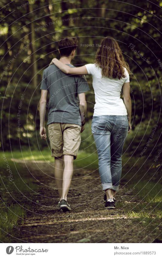 gemeinsamer weg harmonisch Zufriedenheit ruhig maskulin feminin Paar Partner 2 Mensch Umwelt Natur Landschaft Wald Wege & Pfade Mode T-Shirt Jeanshose