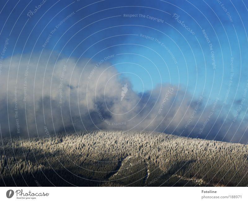 Unwetterwarnung Natur Himmel Baum blau Pflanze Winter Wolken Wald kalt Schnee Berge u. Gebirge Landschaft Eis Nebel Wind Wetter