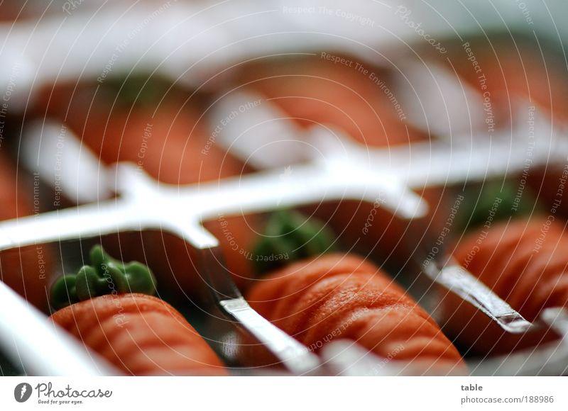 bevorraten grün Stil liegen Lebensmittel orange Lifestyle Design Ordnung Dekoration & Verzierung ästhetisch Ernährung genießen süß Lebensfreude Appetit & Hunger Gemüse