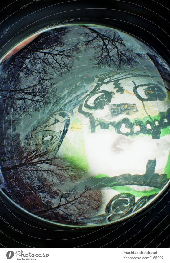DÜSTERE GESTALTEN Himmel Natur Baum Winter Wald Umwelt Landschaft Graffiti Park Horizont außergewöhnlich Schriftzeichen bedrohlich rund einzigartig Zähne