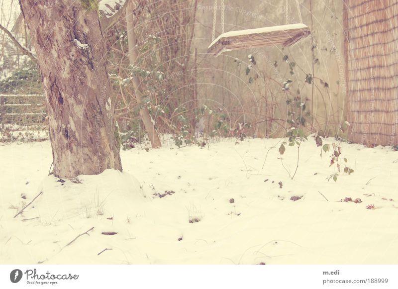Schaukel II kalt Schnee Garten Eis Wetter Frost