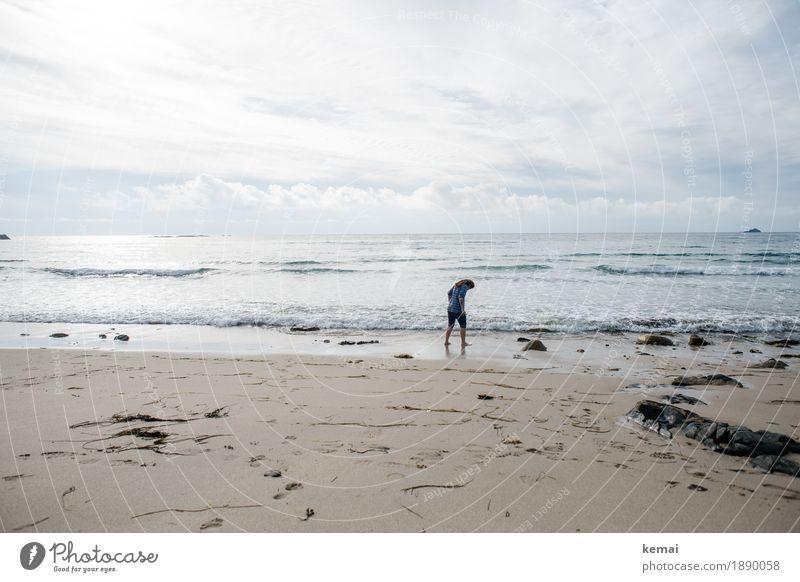 Seeker Mensch Natur Ferien & Urlaub & Reisen Wasser Meer Erholung ruhig Strand Leben Lifestyle Küste feminin Glück Freiheit Ausflug Freizeit & Hobby