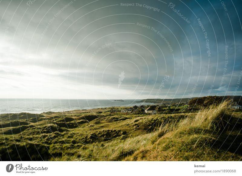 Cornish light Himmel Natur Ferien & Urlaub & Reisen Pflanze Sommer grün Landschaft Meer Erholung Wolken ruhig Ferne Wärme Küste Gras Freiheit