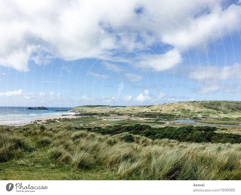 Green peace harmonisch Zufriedenheit Sinnesorgane Erholung ruhig Ferien & Urlaub & Reisen Ausflug Ferne Freiheit Strand wandern Umwelt Natur Landschaft Pflanze