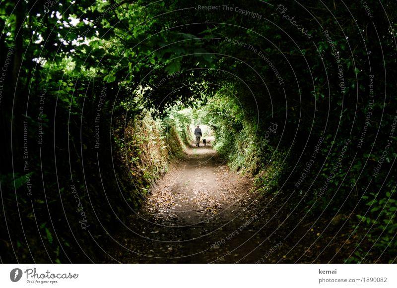 Walking the dog Wohlgefühl Erholung ruhig Freizeit & Hobby Ferien & Urlaub & Reisen Ausflug Abenteuer Freiheit 1 Mensch Umwelt Natur Landschaft Pflanze Sommer