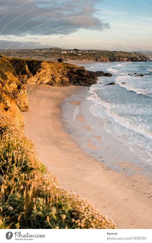 Footsteps Natur Ferien & Urlaub & Reisen Pflanze Sommer schön Wasser Landschaft Meer Erholung ruhig Ferne Strand Wärme Umwelt Küste Freiheit