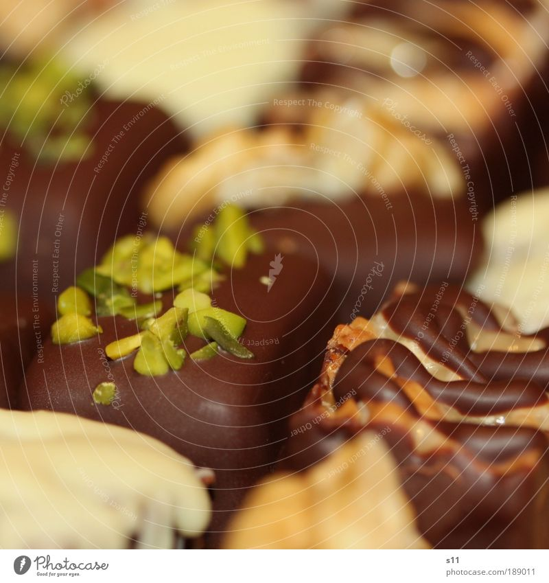 chocolate dreams Dessert Süßwaren Schokolade Konfekt Kaffeetrinken Festessen Duft frisch süß braun grün weiß Dekoration & Verzierung genießen Bettmümpfeli
