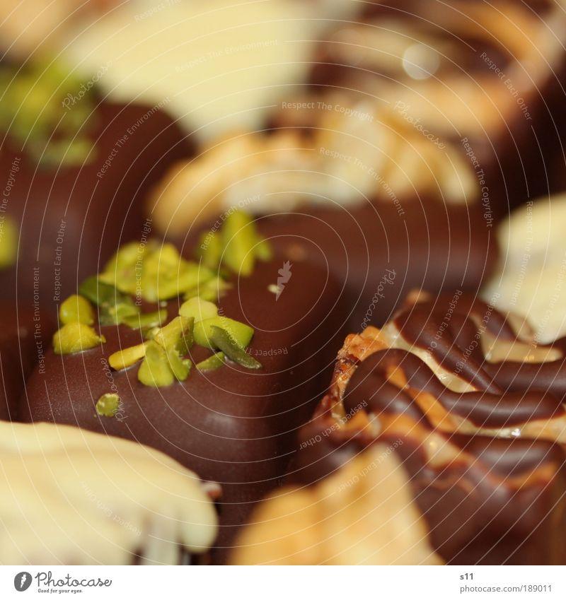 chocolate dreams grün weiß braun frisch Ernährung Dekoration & Verzierung süß genießen Pflanze Süßwaren Duft Schokolade Festessen edel fein Dessert