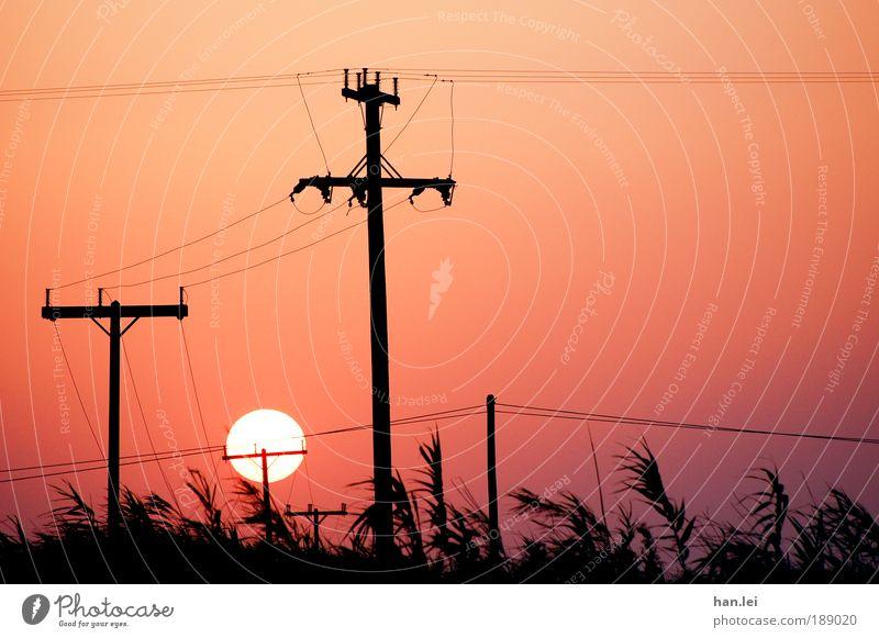 Industrialisierung Sommer Energiewirtschaft Elektrizität Technik & Technologie Kommunizieren Kabel Telekommunikation Christliches Kreuz Schilfrohr Strommast