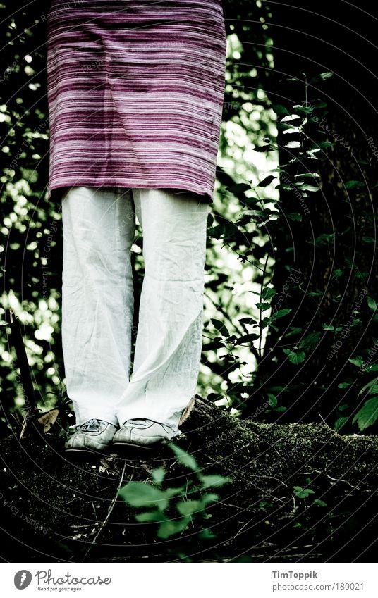 Tu's nicht! Baum Wald dunkel Tod Traurigkeit Angst Ende Verzweiflung Todesangst Sorge Selbstmord Hoffnungslosigkeit ausweglos