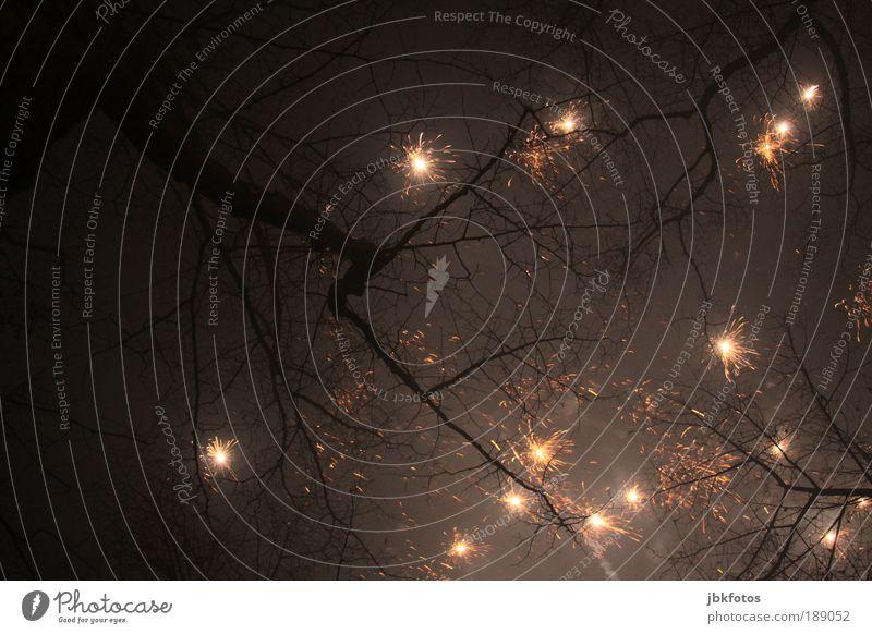 Glitzernder Baum weiß schwarz Feste & Feiern glänzend verrückt außergewöhnlich bedrohlich Romantik Kitsch Silvester u. Neujahr fantastisch Licht Nacht Funken