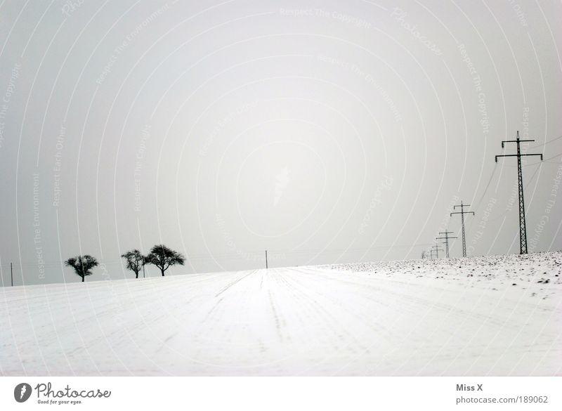 Spuren im Schnee Winter Winterurlaub wandern schlechtes Wetter Eis Frost Unendlichkeit hell kalt Strommast Baum Feld Einsamkeit Schwarzweißfoto Außenaufnahme
