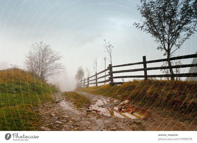 Schlammiger Boden nach Regen in den Karpatenbergen. Extremer Pfad Ferien & Urlaub & Reisen Ausflug Abenteuer Berge u. Gebirge Natur Landschaft Himmel Wolken